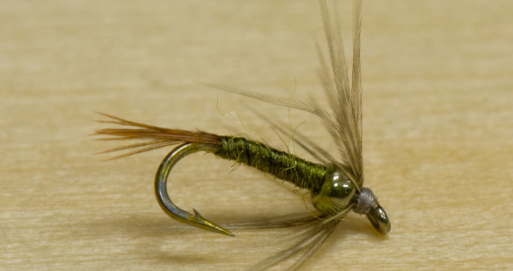 double whammy soft hackle fly