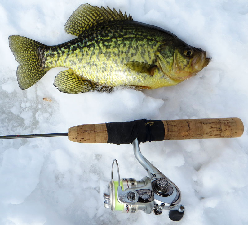 ice fishing northern Minnesota Crappies