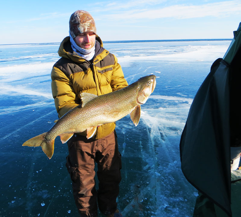 Lake trout big kype for Fish in lake superior