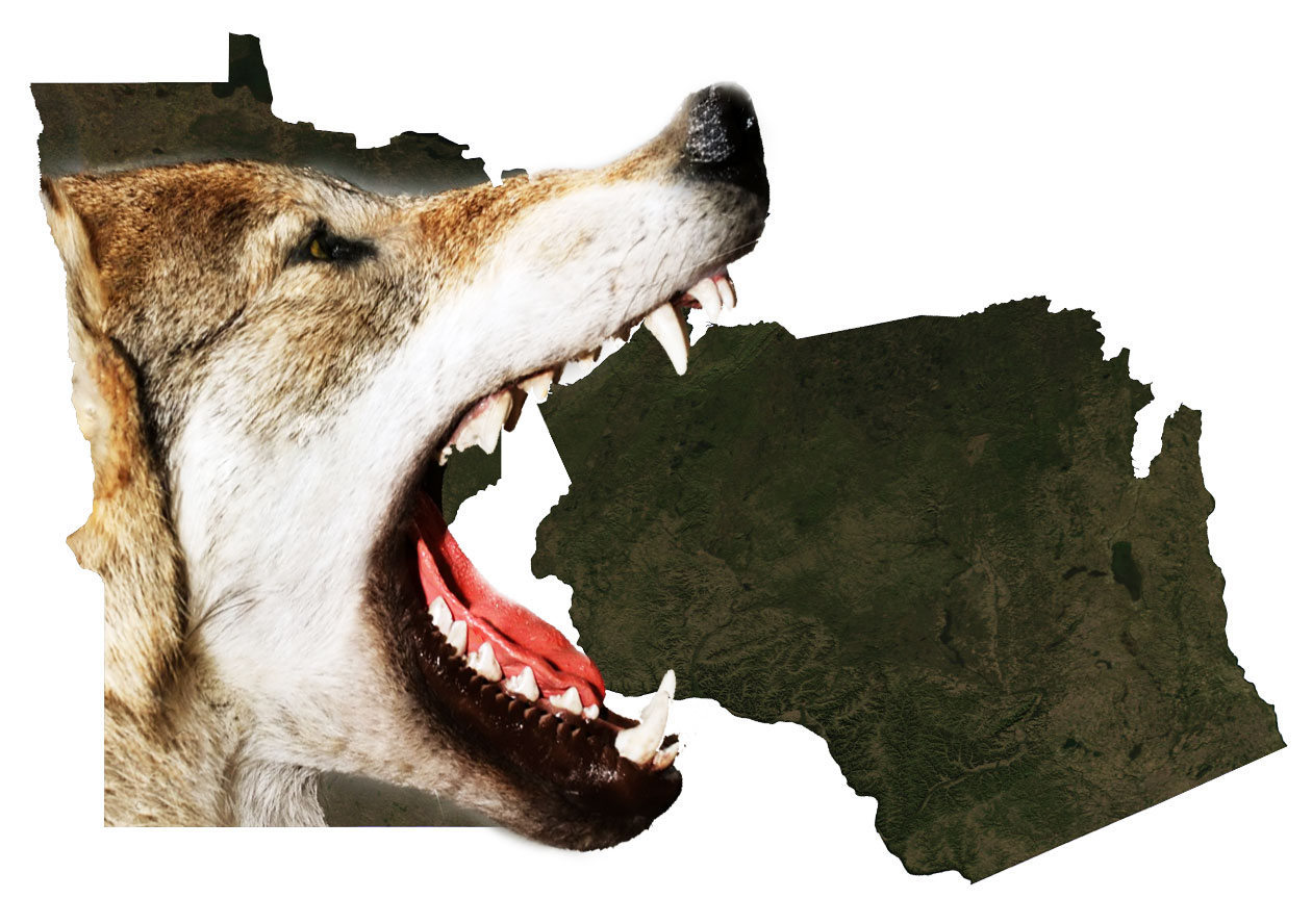 Wisconsin senate passes wolf hunting bill big kype for Minnesota non resident fishing license